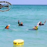 Es ist PADI Open Water Diver Kurs Zeit auf Koh Phangan!