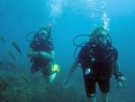 PADI Open Water Schüler Überweisung in Thailand