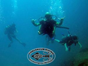 SCUBA Tauchen am Sail Rock im Golf von Thailand