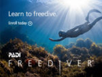 Der PADI Freediver-Kurs mit der Chaloklum Diving Tauchschule