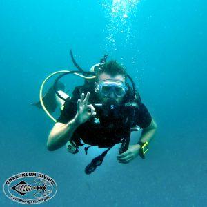Der Chaloklum Diving Blog ist zurück