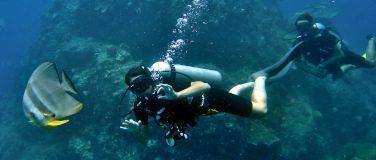 """""""Discover Diving"""" und mehr"""