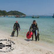 Chaloklum Diving macht sich wieder an die Arbeit!