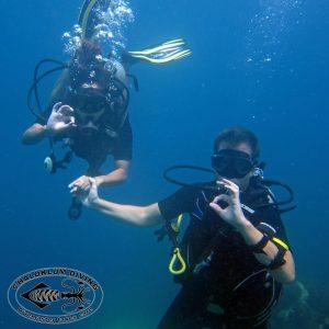 PADI Divemaster-Auszubildender, Chaloklum Diving, Koh Phangan